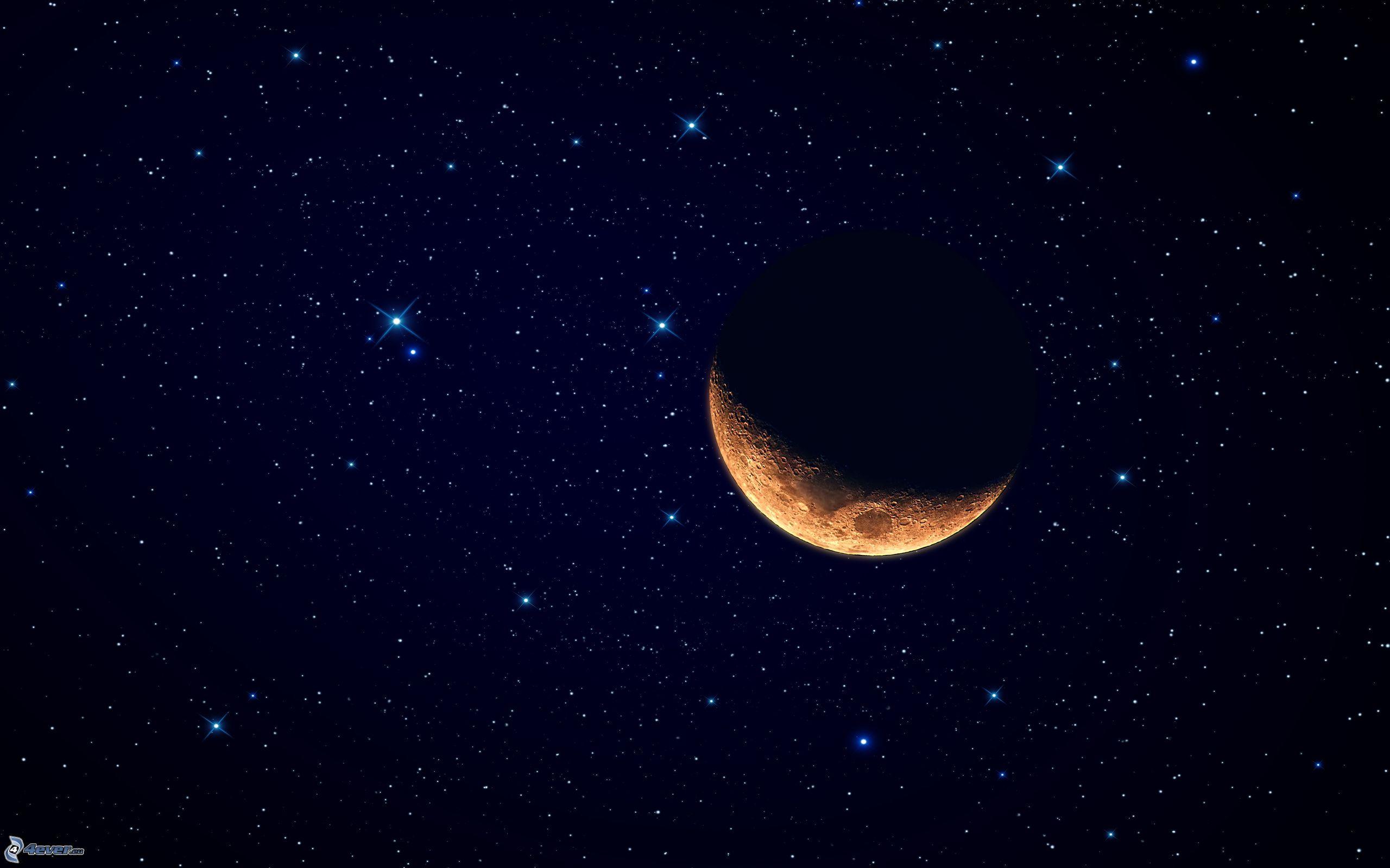 Mond Und Sterne Wallpaper Mond Sterne Tiere Seite 2
