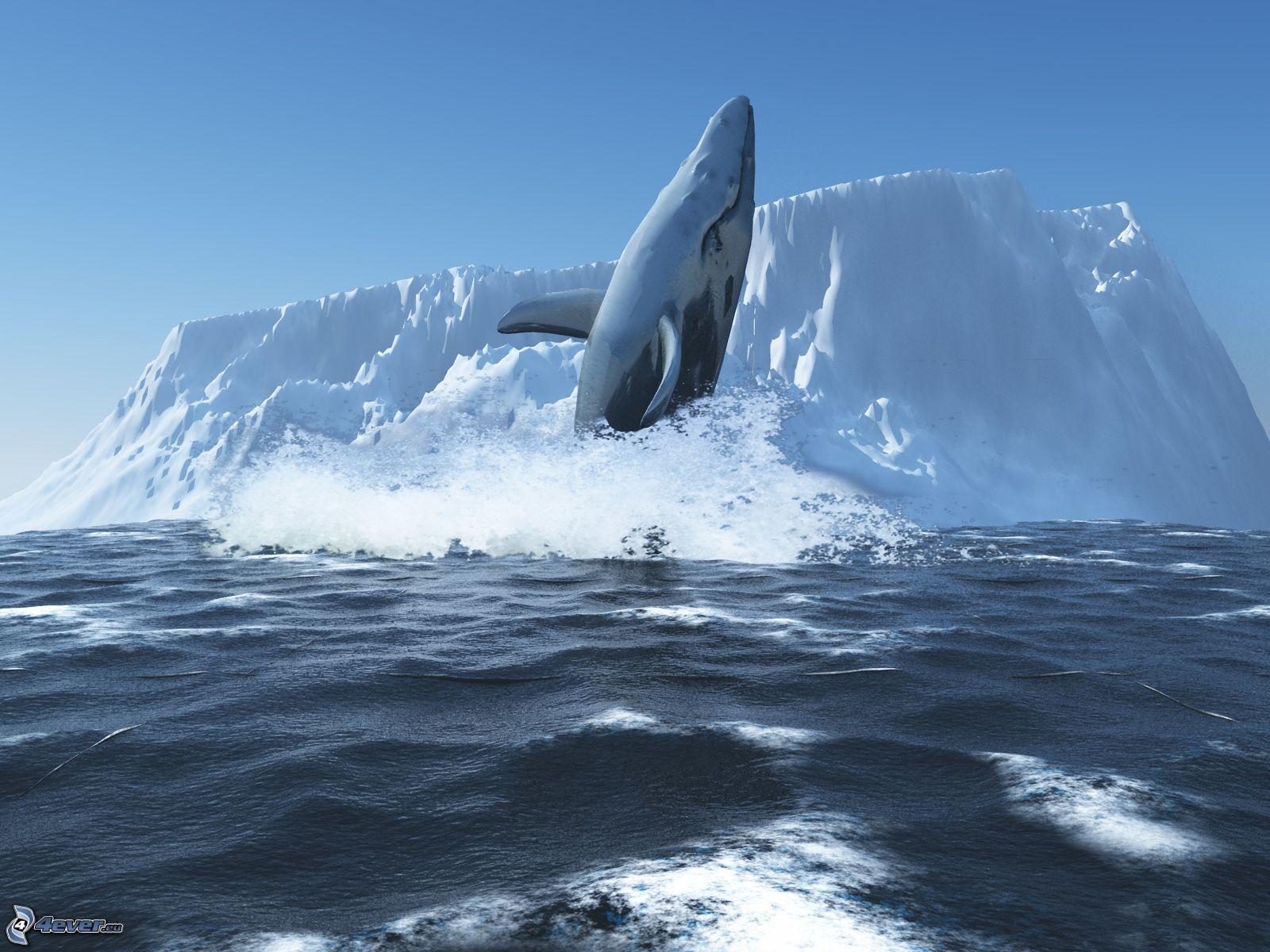 iceberg wallpaper free download