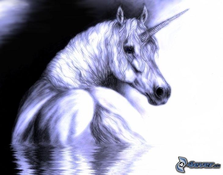 pferd einhorn